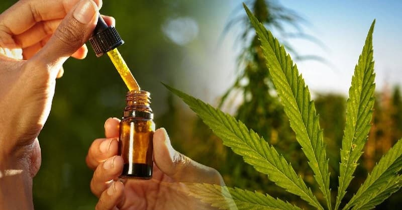 productos del cannabis