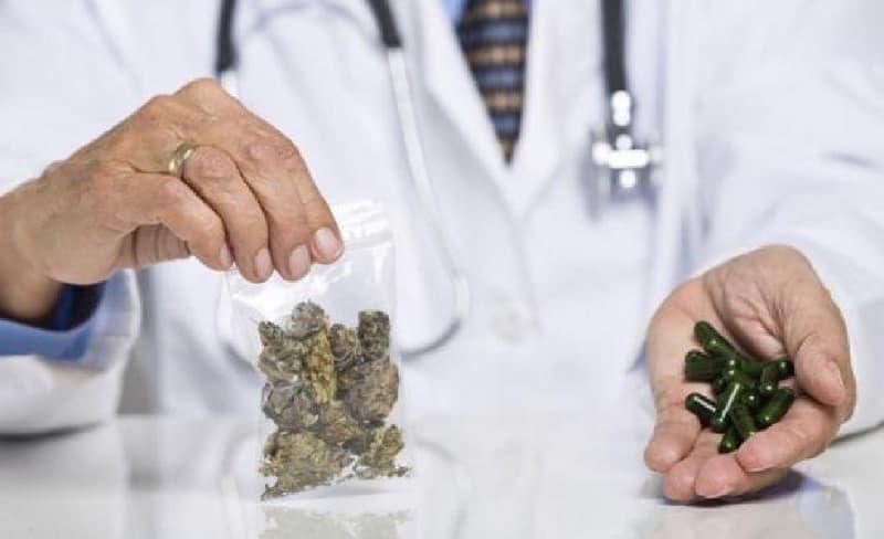 suplementos de cannabis